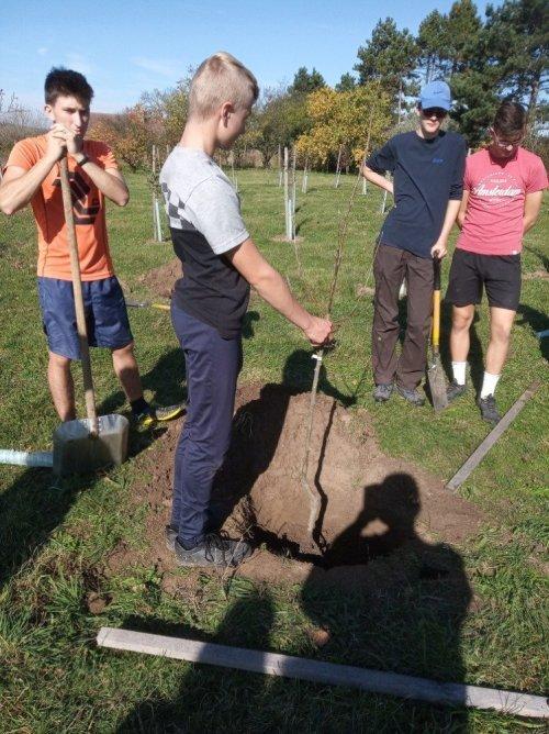 Podzimní práce studentů agropodnikání