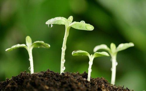 Kurzy odborné způsobilosti pro nakládání s přípravky na ochranu rostlin